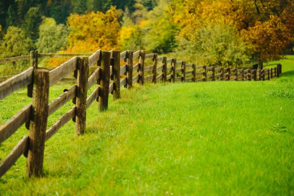 Wooden fence posts set in concrete