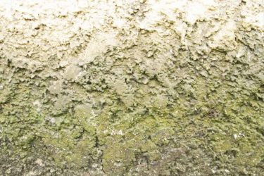This is Why Your Concrete Isn't More Smooth (and what you can do)