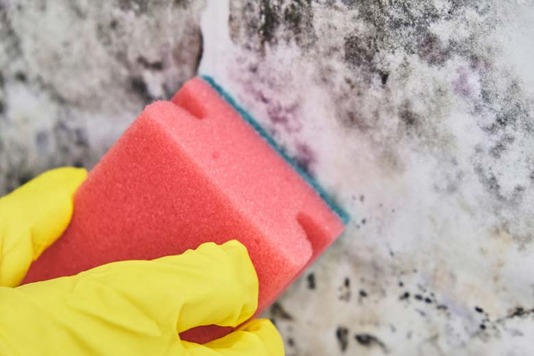 Cleaning concrete basement wall