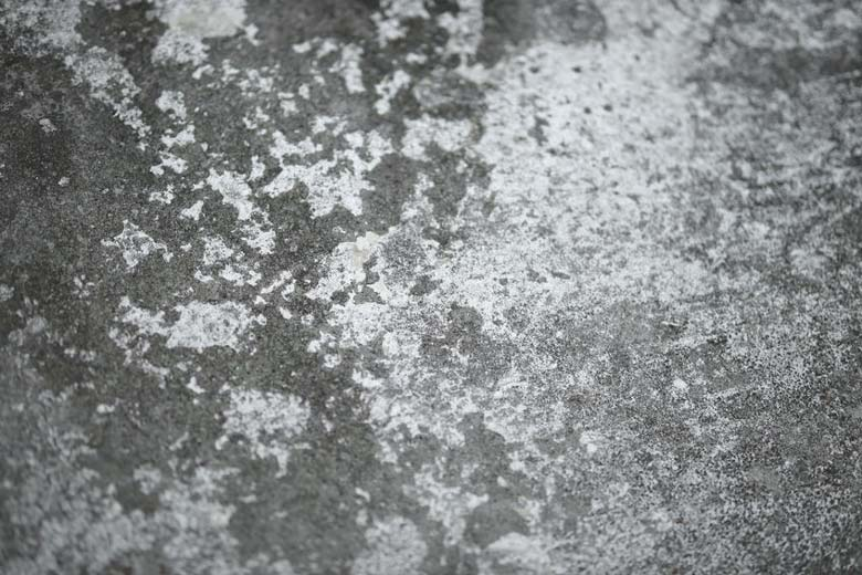 Concrete that has turned white